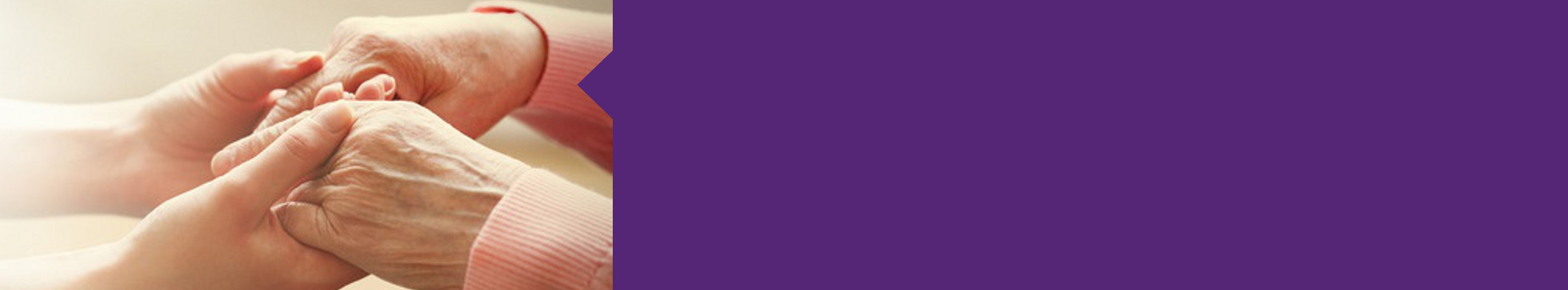 Purple header banner_elderly